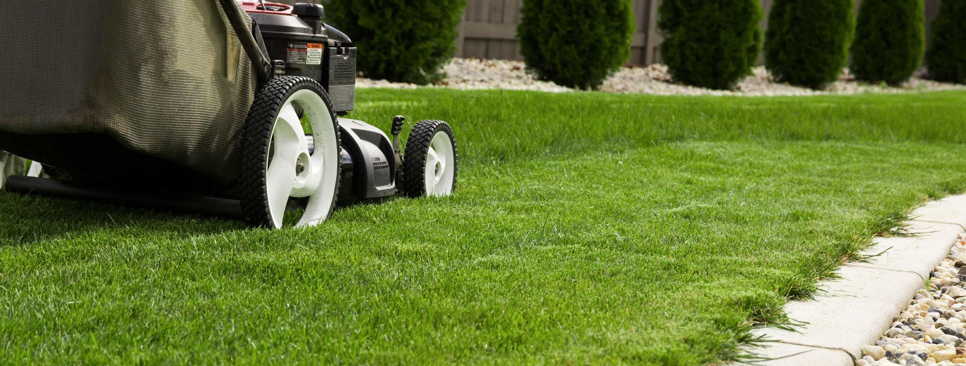 L'herbe sera toujours plus verte de<br /> votre côté de la clôture !
