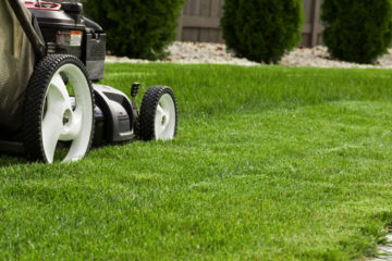 Entretien pelouse et jardin